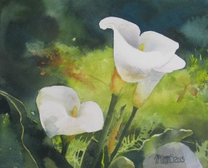 Day 16 Wild Calla Lilies 10X8