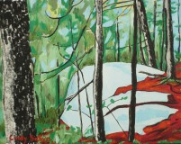 Spectacular Lookout, Algonquin Park_Cindy Babyn_for printing